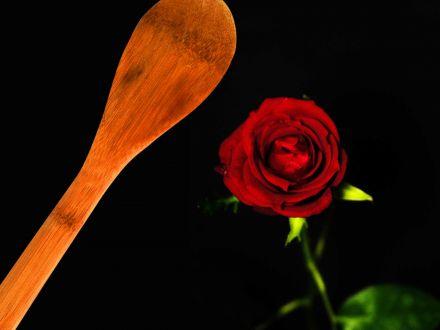 BookMediaItem%2F4548%2F440x330%2Fspoon+rose.jpg